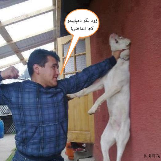 http://azerila.persiangig.com/image/fotochap/9.jpg