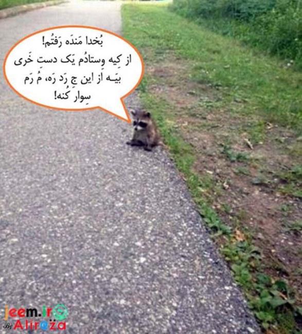 http://azerila.persiangig.com/image/fotochap/f-5/1%20%286%29.jpg
