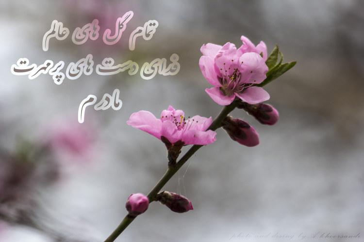 http://azerila.persiangig.com/image/jeem.ir/Madar/IMG_2494 copy3.jpg