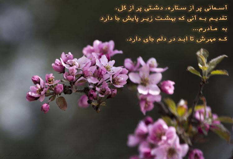 http://azerila.persiangig.com/image/jeem.ir/Madar/IMG_2643 copy3.jpg