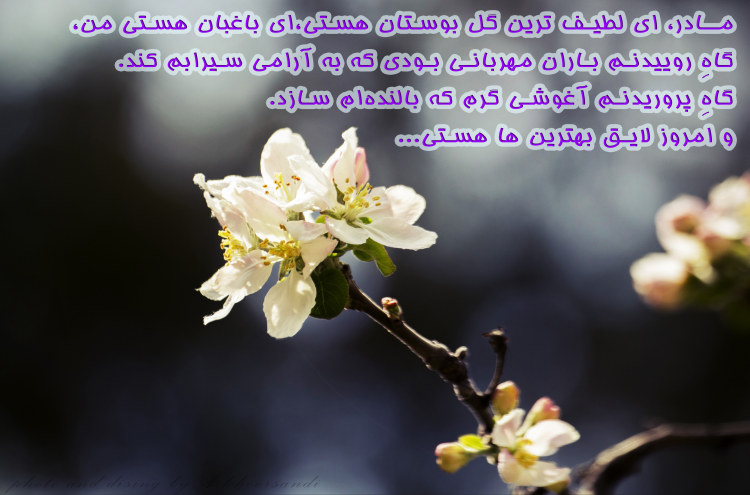 http://azerila.persiangig.com/image/jeem.ir/Madar/IMG_2653 copy3.jpg