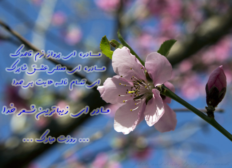 http://azerila.persiangig.com/image/jeem.ir/Madar/IMG_2707 copy3.jpg
